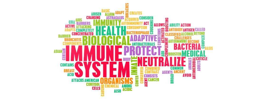 Immune-seminar